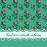 Seamless roses pattern with lace green background. Seamless roses  pattern with lace green background Stock Images