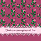 Seamless roses pattern with lace purple background. Seamless roses  pattern with lace purple background Stock Images