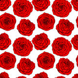 Seamless roses pattern Royalty Free Stock Photos
