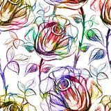 Seamless Roses Pattern. Vector, EPS 10 Royalty Free Stock Photo