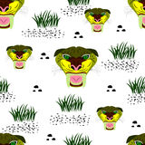 Seamless of saber-toothed tiger portrait on white background w Stock Image