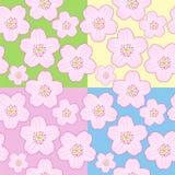 Seamless sakura blossom Stock Photos