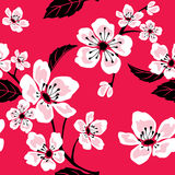 Seamless Sakura Pattern Royalty Free Stock Photos