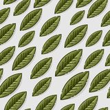 Seamless sample with leaves on gray background. Template for wallpapers, site background, print design, cards, menu royalty free illustration