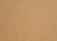 Seamless sand background close up texture.  Royalty Free Stock Photo