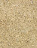 Seamless sand texture Royalty Free Stock Photo
