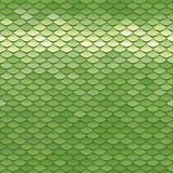 Seamless scale pattern. Green squama texture Royalty Free Stock Image