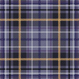 Seamless Scottish plaid in blue. Stock Photography