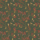 Seamless scroll floral berry pattern on green Stock Photography