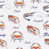 Seamless Seafood pattern on gentle gray backdrop. hand drawn engraved seafood background. vintage sea animals texture