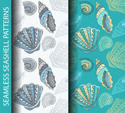 Seamless seashell patterns. Based on hand drawn sketch Stock Photos
