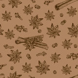 Seamless seasoning pattern with star anise and other condiment Royalty Free Stock Photos