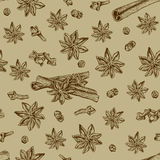 Seamless seasoning pattern with star anise and other condiment Stock Photos