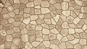 Seamless sepia background Stock Images