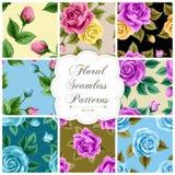 seamless set för blom- modeller Royaltyfri Bild