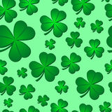 Seamless Shamrock Pattern Stock Photography