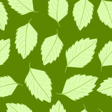 Seamless sharp leaves Stock Photography