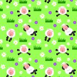 Seamless Sheep Background Royalty Free Stock Images