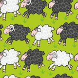 Seamless sheep and ram Royalty Free Stock Images