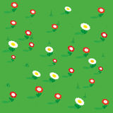 Seamless simple flowers patterns isometric view. Meadow with flowers tulip, chamomile and grass. Vector illustration Royalty Free Stock Photography