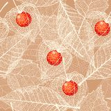 Seamless skeleton winter cherry and leaves Royalty Free Stock Image
