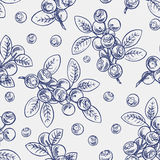 Seamless sketch blueberry Stock Photography
