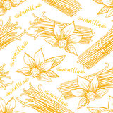 Seamless sketch vanilla. Cute seamless background with different sketch vanilla Stock Photo