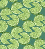 Seamless slice Lime Citrus Pattern Background. style sketch Royalty Free Stock Photography