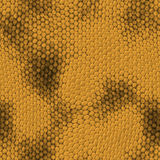 Seamless snake texture Royalty Free Stock Images