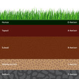 Seamless soil layers Stock Images