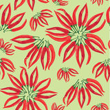 Seamless spice pattern with hot chilly pepper Royalty Free Stock Photography