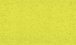Seamless sponge texture Stock Photo