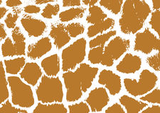 Seamless spotted Giraffe Skin Background. Royalty Free Stock Photos