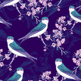 Seamless spring cherry pattern with birds Royalty Free Stock Photography