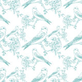 Seamless spring cherry pattern with birds Royalty Free Stock Photos