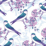 Seamless spring cherry pattern with birds Stock Image