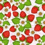 Seamless spring floral pattern royalty free illustration