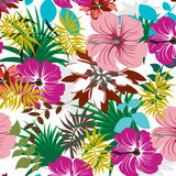 Seamless  Spring Flower illustration Royalty Free Stock Image