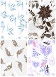 Seamless  spring flower illustration Royalty Free Stock Image