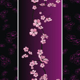 Seamless spring flower pattern Stock Photos