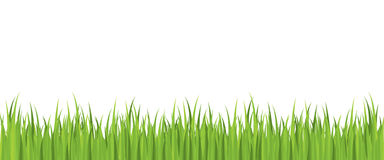 Seamless spring grass vector Royalty Free Stock Photography