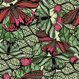 Seamless spring pattern butterflies and flowers. Floral pattern. Vector illustration of seamless spring pattern butterflies and flowers. Floral pattern for Stock Photos