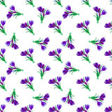 Seamless spring pattern. Crocus, saffron, lily of the valley, sn. Owdrops. Flet design. Vector illustration Stock Photos