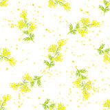 Seamless spring pattern with sprig of mimosa. Seamless vintage spring pattern with beautiful sprig of mimosa, Design for International Women Day, March 8 Royalty Free Stock Photos