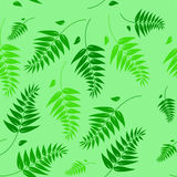 Seamless Spring and Summer Green Floral Background Royalty Free Stock Photography