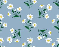 Seamless stitch embroidered pattern with daisy flowers on a blue background. Vector royalty free illustration