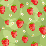 Seamless strawberry background. Seamless green background with strawberries and flowers Royalty Free Stock Images