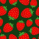 Seamless strawberry background. Seamless strawberry vector pattern background Stock Photography