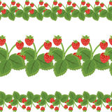 Seamless strawberry pattern Royalty Free Stock Photography