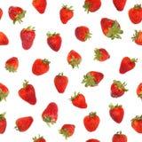 Seamless strawberry pattern. Royalty Free Stock Image